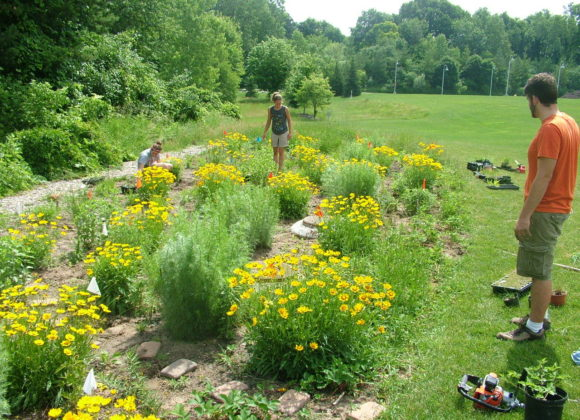 Friday Feb. 26 Rain Gardens with Native Plants for Healthy Waters